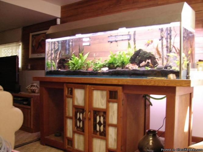 Aquarium Plants Soil Sand Co2 Tablets Drift Wood For Sale