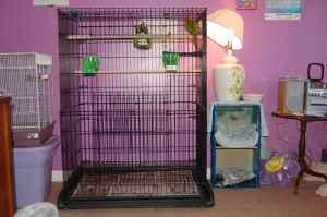 4'x 3' flight cage for sale - Price: $45.00