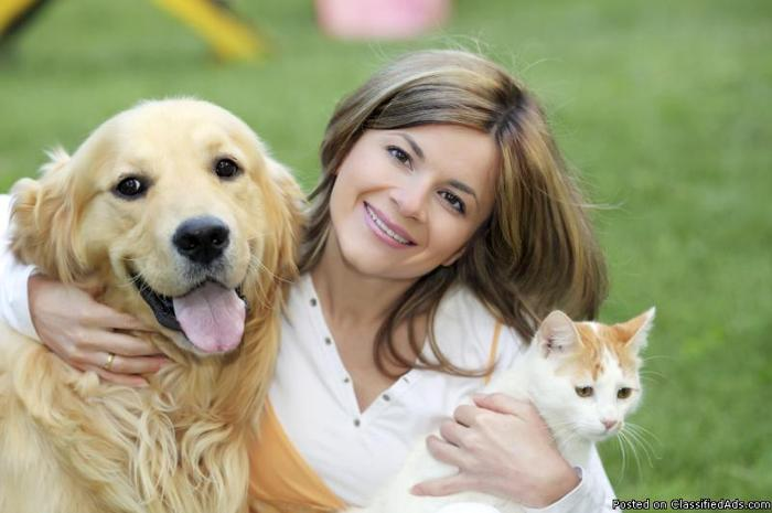 Become A Professional Dog Walker / Pet Sitter - Price: 100