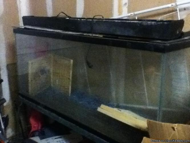 Fish Tank - Price: best offer