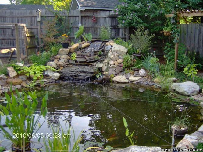 Koi fish pond cost for Koi pool for sale
