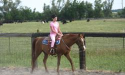 """""""Carrots"""" is a Beautiful 17 y/o Red Chestnut Gelding~~Very Gentle, Kid Safe lesson horse from the ground up. Loads, clips, ties, easy farrier up keep; great feet does not need shoeing, sound and very easy keeper. Great trail horse, and all-around Pleasure"""