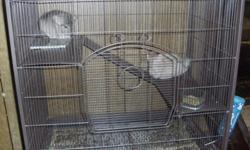 Two chinchillas, new cage, food, balls, newspaper, bath, and dust all included. Shy at first, but get very social after getting used to people. I'm asking for 450, but it is negotiable.