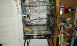 6 Healthy and beautiful parakeets. All are under 2 years old. One albino and another white with blue. 2 Yellow/green and 2 pureblue. 2 Male and 4 female. More pictures available. Everything is in excellent condition. Includes the large cage (shown),