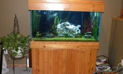 90 gal Oak cabinet fish tank. Rocks, plants, fish, light, etc. are all included. A must see to appreciate. $500 or best offer.