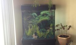 Very nice aquarium that is in great condition, all components work and what you see is what you absolutely get.