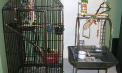 Young Severe Macaw with I large cage and 1 play stand Beautiful colors and very loving and friendly even with children.
