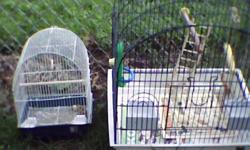 the cockatiel cage has a calcium perch and a wooden perch, and a swing hung by sisal rope, has a 9 step wooden ladder and both food/ water dishes this model of cage did not have a bottom grate, the small cage has it's dishes and a small swing. pick up