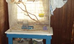 36 x 18 x 30 flight cage with all supplies, stand and birds. All three birds are females. They reproduce quickly, so I don't have a male.