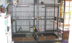 """18040 HQ Giant Double bird cage, 80""""W x 80""""H (66"""" interior) x 40""""D, 350 lbs, powder coated finish. Removable divider so two birds can be kept separately if desired. One inch spacing between ~1/4 inch bars. Two large front doors, 6 small side doors"""