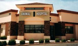 Going out of town? Board your pets with us! The staff here at Centennial Hills Animal Hospital knows that it is not always possible to bring your pets on vacation with you, which is why we offer our boarding services. We know that it can be stressful