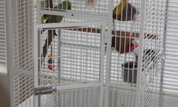 """To good home only. Comes with three cages; 1 small transport cage and 2 larger ones. This is a sweet boy who needs more attention than I can give due to my work schedule. He does say 2 words so far """"green bird"""" and he also loves to do a sing-song warble"""