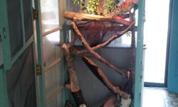 3 lamp fixture 7ft tall 3ft wide 2 doors Comes w/all deco & 2ft M iguana