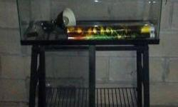 Iguana Cage with Stand. Great condition. This has a wire topper. Also included is the topper for just the aquarium portion.(leaned against the stand) I have the light included but it just has a regular bulb in it.