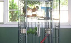 Freestanding cage approx 5 tall. Originally housed two conures, but will also comfortably hold a larger sized bird, or a few smaller sized birds. Includes play perch on top of cage, a flat shelf perch, 2 food bowls, a rope perch, and a swing. I also have