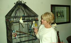 large birdcage with stand.Metal