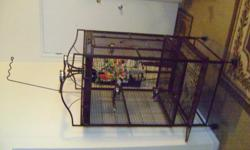 African Grey with new cage and toys.He is on the Zupreem(he loves it)fresh fruits.I want to find him a home where he will be loved and spoiled.He talks.He is five years old.