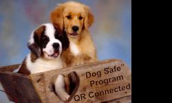 Protect your dog with the new qr coded dog tags, that links to your dogs own personal web page.. Store medical records, document, emergency contact information, pictures and even video and most important get your dog back in record time... With over 5