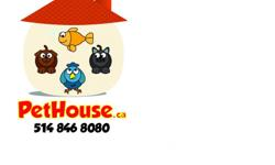 KENNEL, CATTERY, FISH 'N BIRDS TOO! COME TO US OR WE GO TO YOU! www.PetHouse.ca