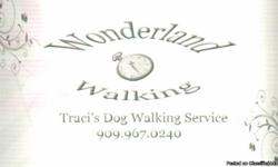Traci's Dog Walking and Animal Services Pricing for Dog Walks (Free Brushing) Special: ?5? 1 hour walks $50 Special: ?12? 45min walks $90  15min $7   30 min $10   1 Hr $15   Other Services --  Back yard clean up (Dog Poop!) $5   Nail Trimming $ 5   Ear