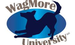 Offering Doggie Daycare, Cage-Free Boarding with 24hr supervision, many Training options, and Pet Grooming. WagMoreU.com